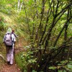 Escursioni in natura